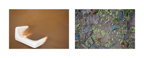 diptych2-small
